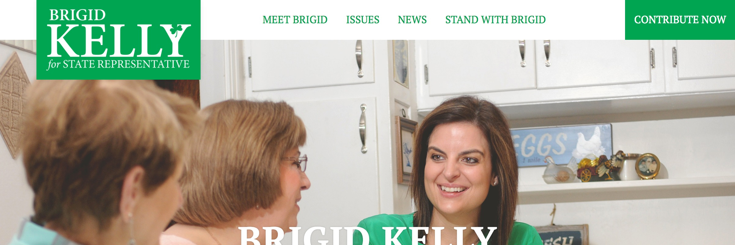 Brigid Kelly For State Representative