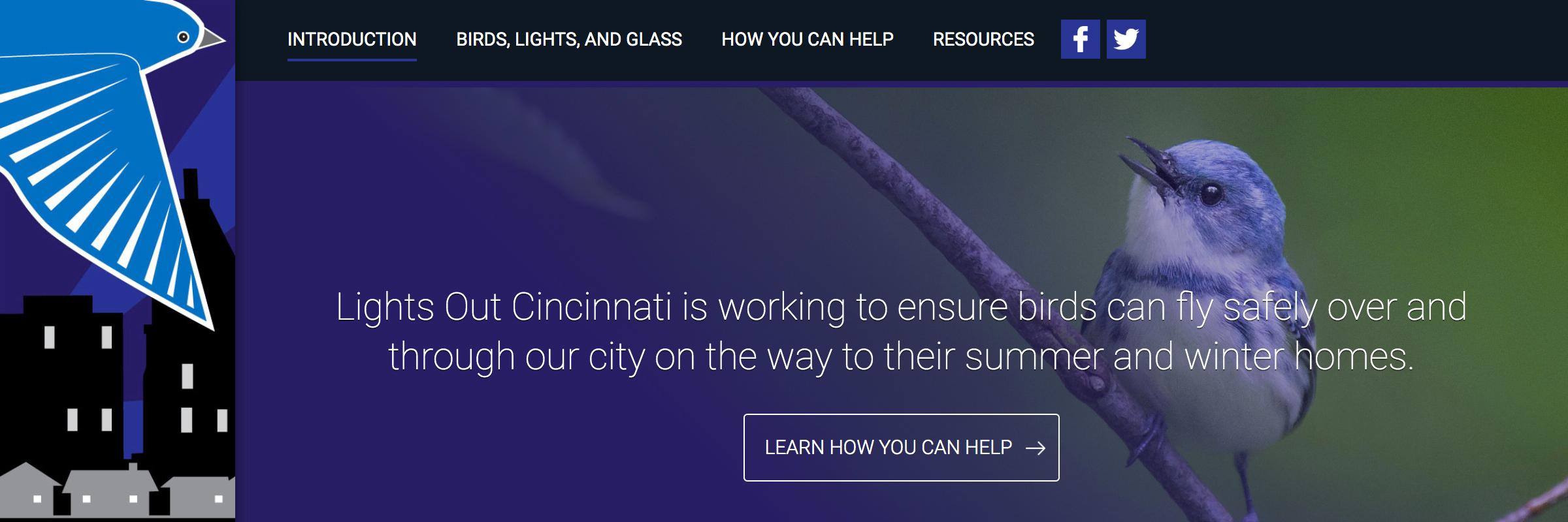 Cincinnati Zoo: Lights Out Cincinnati
